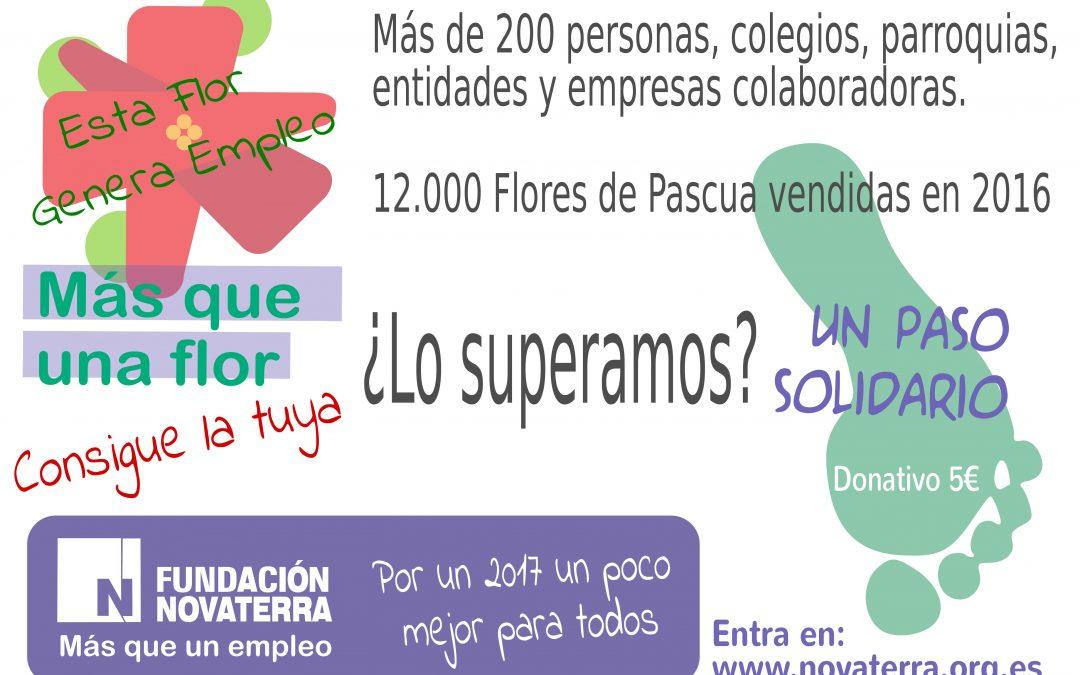 """Participa en la campaña navideña """"Más que una Flor"""""""