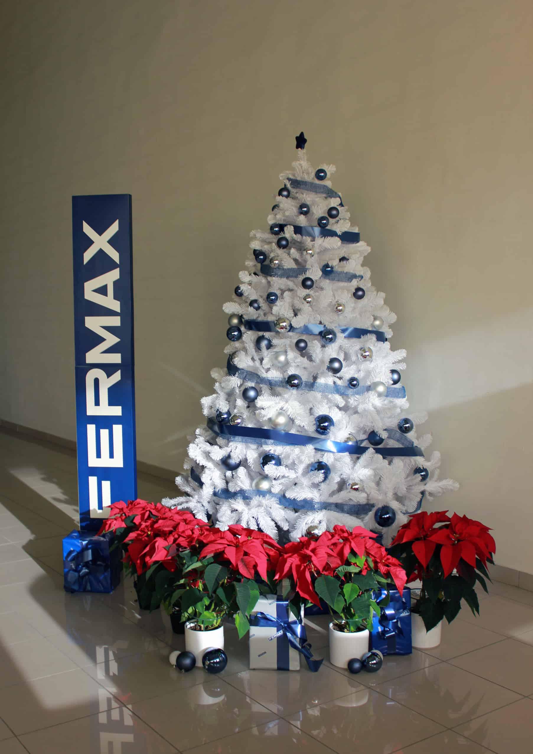 fermax-fotos-planta-navidad