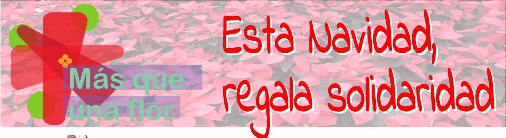 """""""Más que una flor"""" busca nuevos centros solidarios"""