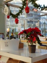 Novaterra distribuye 17.000 flores de Pascua Solidarias en el 25 aniversario de su campaña Navideña